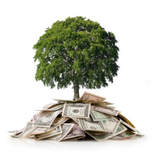 MMM Money tree image