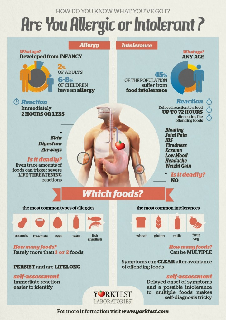 YorkTest - Food Intolerance vs Allergy